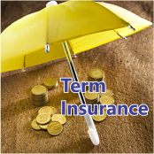 How to Choose a Term Insurance Policy that suits you best