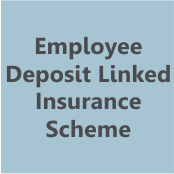 Employee Deposit Linked Insurance Scheme- thumbnail