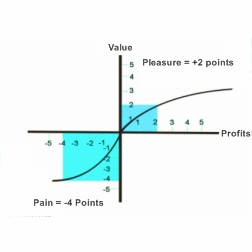 Prospect Theory Or The Loss Aversion