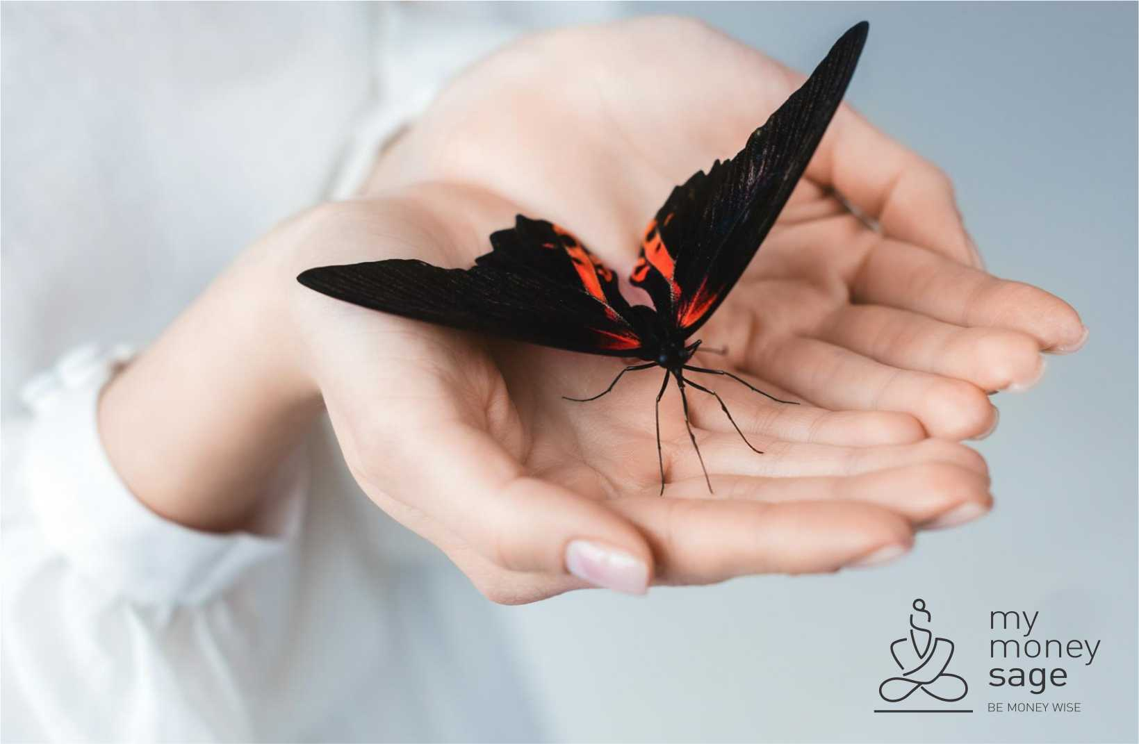 The Butterfly Effect And Personal Finance