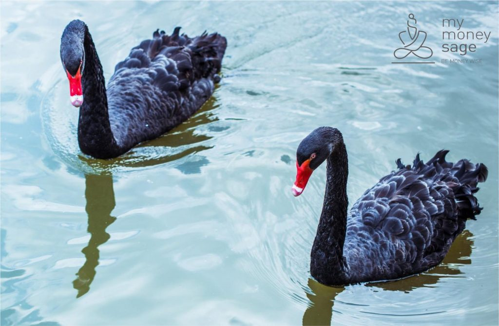 How to protect your portfolio from Black Swan events